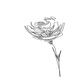 line drawing - flower