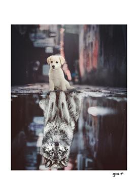 Teen Wolf by GEN Z