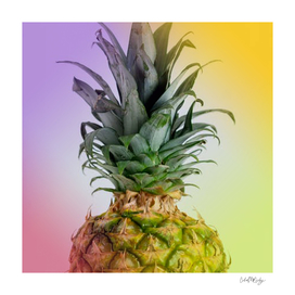 Pineapple & Colorful Border
