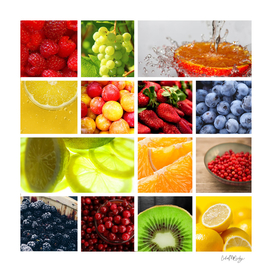 Colorful & Vibrant Fruit Collage