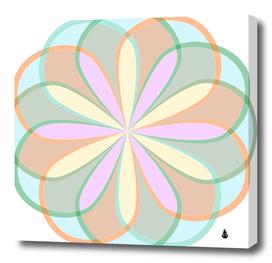 Flower stained glass window symmetry