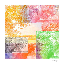 Colorful Abstract Tree Collage