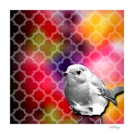 Grayscale Bird & Colorful Quatrefoil