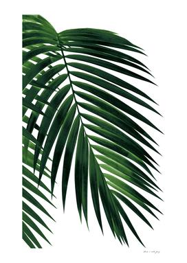 Tropical Green Palm Leaf #1 #botanical #decor #art