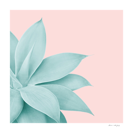 Agave Finesse #7 #tropical #decor #art