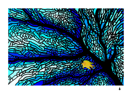 Sea fans diving coral stained glass