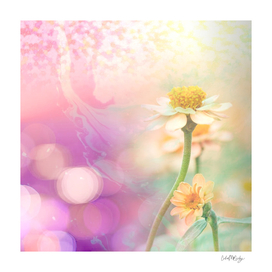 Delicate Pastel Flower Abstract