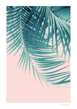 Palm Leaves Summer Vibes #11 #tropical #decor #art