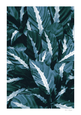Blue Green Tropical Jungle Night Leaves #1 #tropical #decor