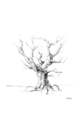 Line Tree 01