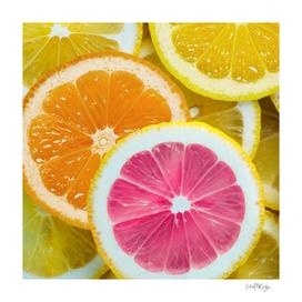 Orange, Pink & Yellow Fruit Slices