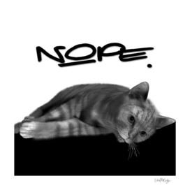 Lazy Cat Nope Typography