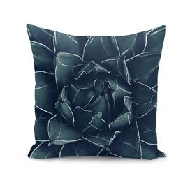 Agave Queen Succulent #1 #tropical #decor #art