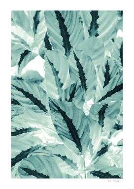 Tropical Jungle Leaves #1 #tropical #decor #art