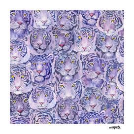 Purple Tigers pattern