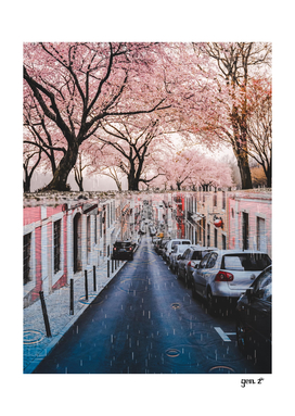 The Pink Side of the Street by GEN Z