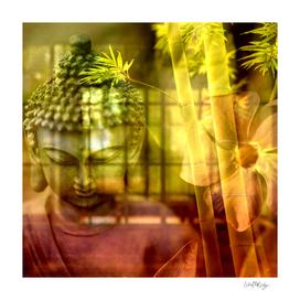 Zen & Spiritual Relaxation - Buddha & Bamboo