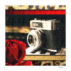 Vintage Camera Piano Leopard & Red Rose