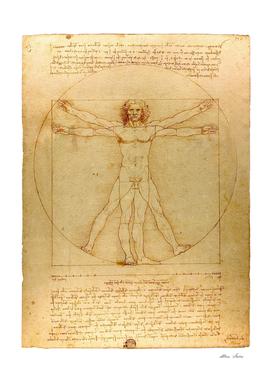 Leonardo Da Vinci, Vitruvian Man, vintage poster, retro