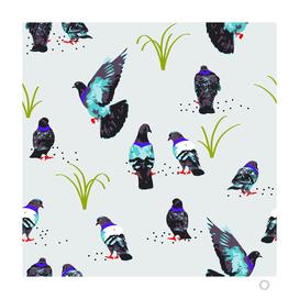 pigeons-art-print