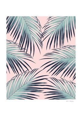 Blush Palm Leaves Dream #3 #tropical #decor #art