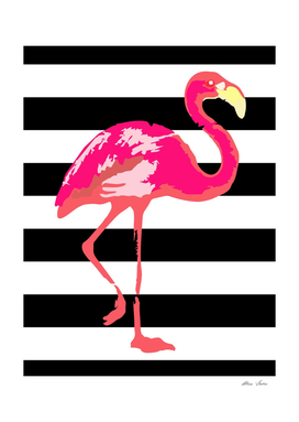 Flamingo, tropical summer poster, black and white stripes