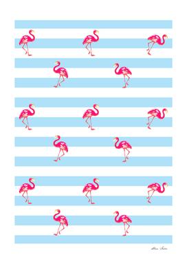 Flamingo, Pink Flamingo, blue stripes bg, Flamingo pattern