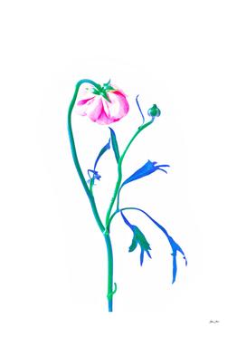 One Flower - Study 3. Back