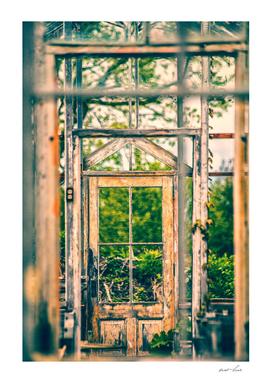 Thru Times Window