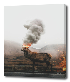 Fire Deer