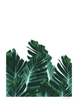 Green Banana Leaves Dream #4 #tropical #decor #art