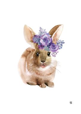 Rabbit in the Wreaht