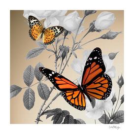 Orange Butterflies & Grayscale Flowers
