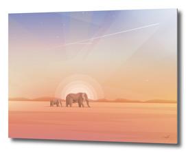 Elephants Journey