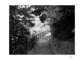 Rural Walk
