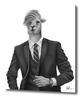 Alpaca in a suit