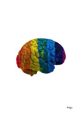 my gay brain