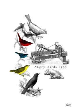 Etude - Angry Birds