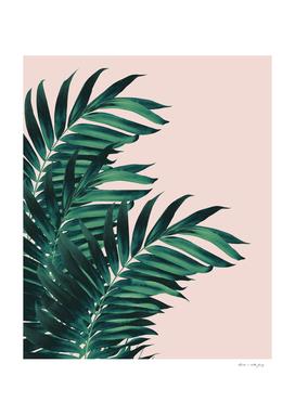 Palm Leaves Tropical Blush Vibes #1 #tropical #decor #art