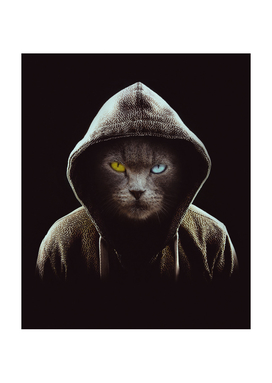 Awesome Black Cat Hooded Pullover