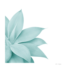 Agave Finesse #8 #tropical #decor #art