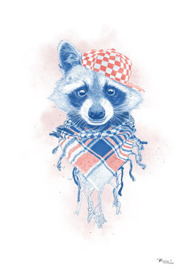 Rocco Raccoon - blue version