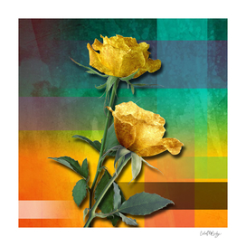 Gold Roses & Colorful Abstract
