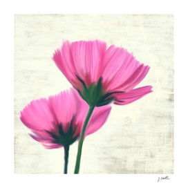 Soft pink flowers, painting