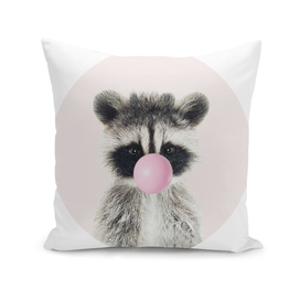 Raccoon With Bubble Gum