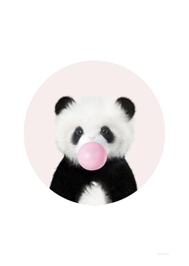 Panda Bear With Bubble Gum