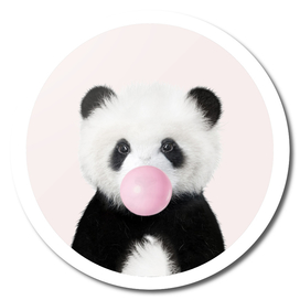 Panda Bear With Bubble Gum