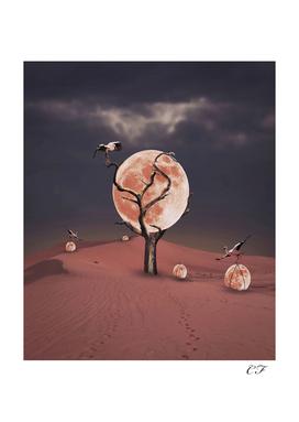 le ramassage de lunes