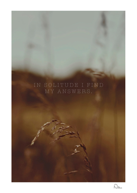 In Solitude I Find My Answers