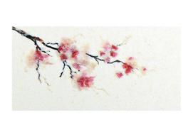 Winter sakura